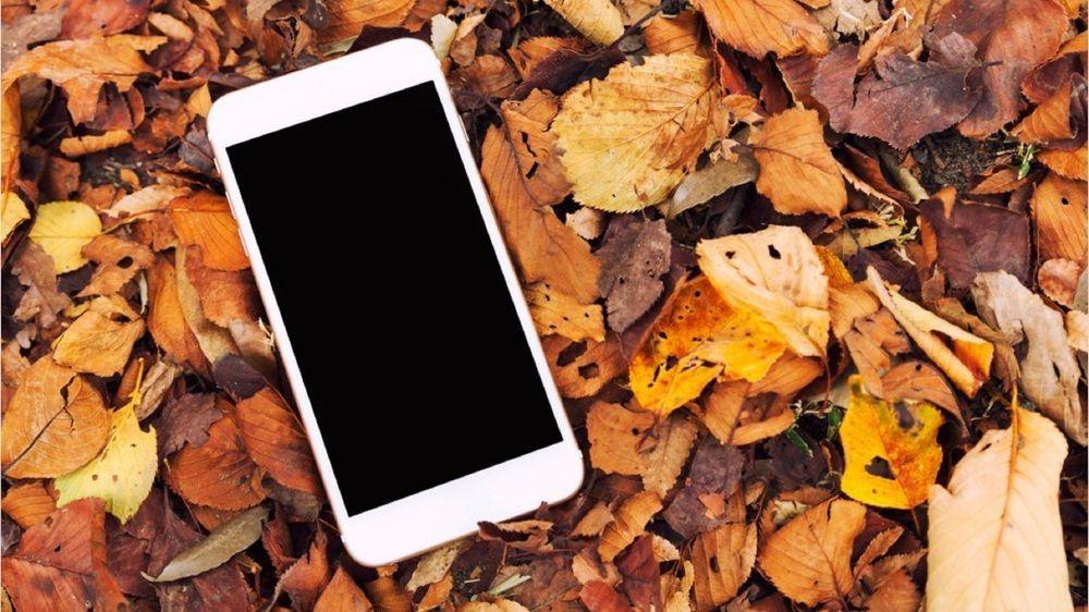 Diese Apps sind im Herbst besonders hilfreich