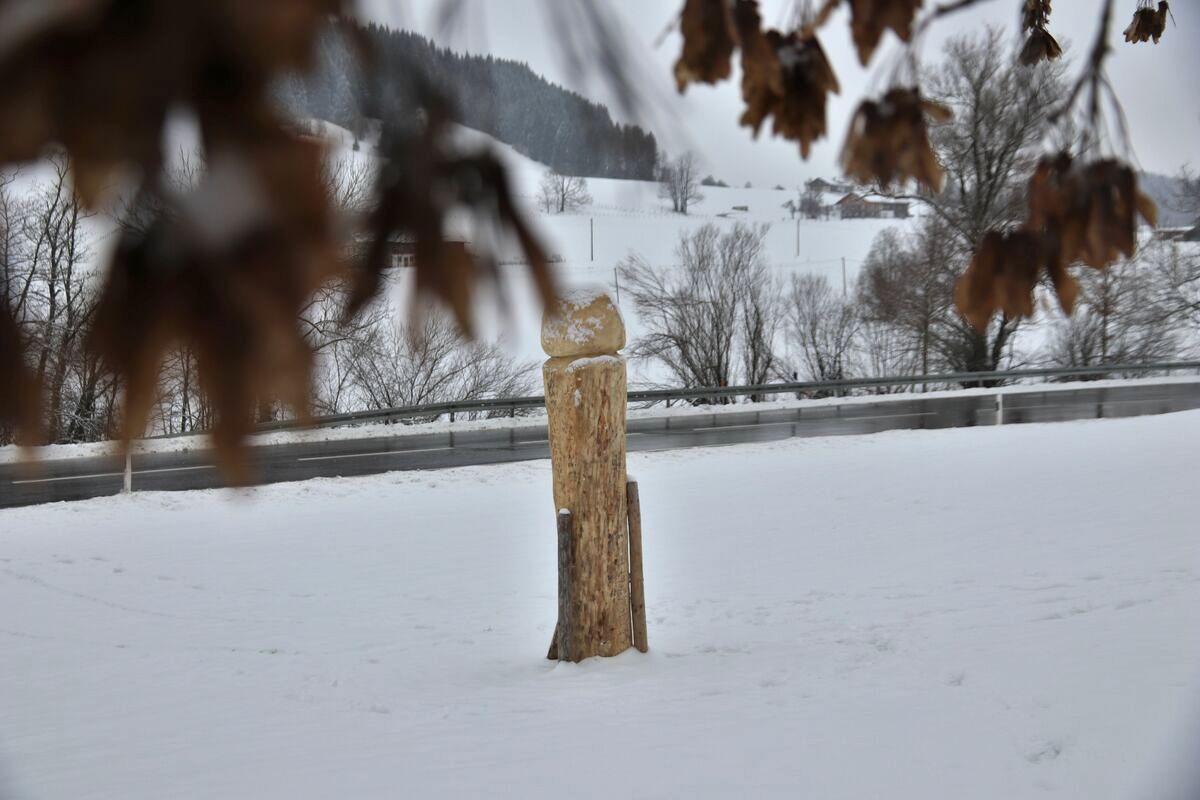 Ein neuer Holzpenis steht im Westallgäu